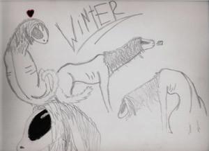 winter2icon